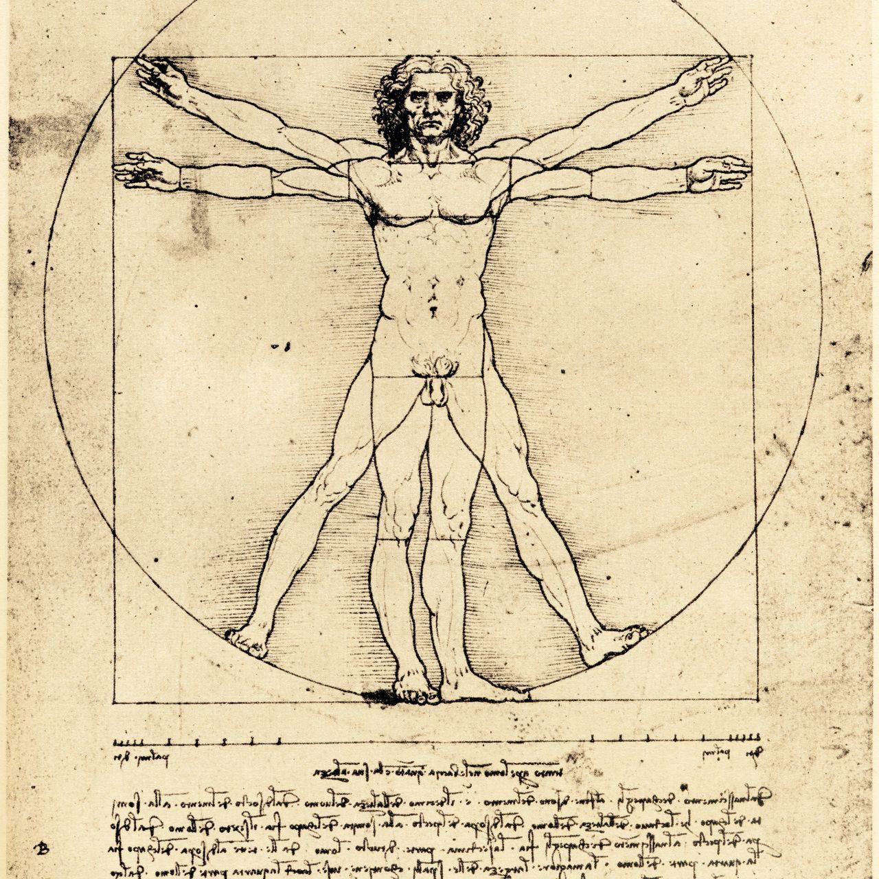 Bức vẽ nổi tiếng người Vitruvian của Leonardo da Vinci